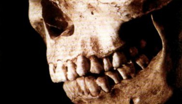 Зловещие мертвецы 2. Сценарий