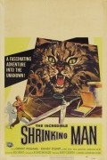 Невероятно худеющий человек /1957/ (фильм)