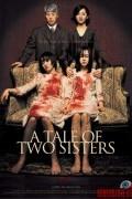 История двух сестер (фильм)
