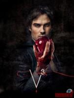 the-vampire-diaries31.jpg