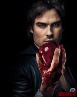 the-vampire-diaries35.jpg