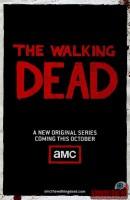 the-walking-dead08.jpg