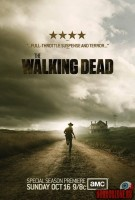 the-walking-dead11.jpg