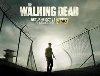 the-walking-dead38.jpeg