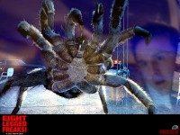 eight-legged-freaks02.jpg