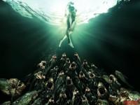 piranha-3dd00.jpg
