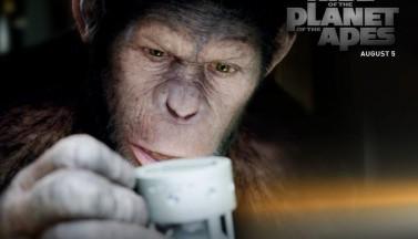 Восстание планеты обезьян. Обои