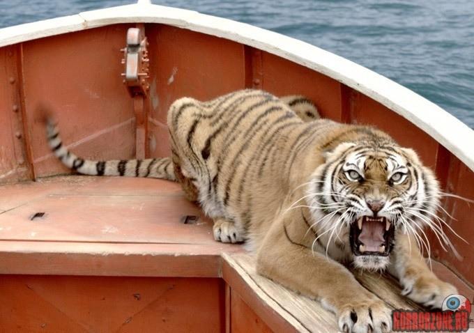 Кино оборона тигра равно мальчика на лодке кино про тигра и мальчика в лодке