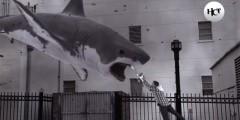 Торнадо разбрасывает по городу акул — на американском ТВ показали Sharknado