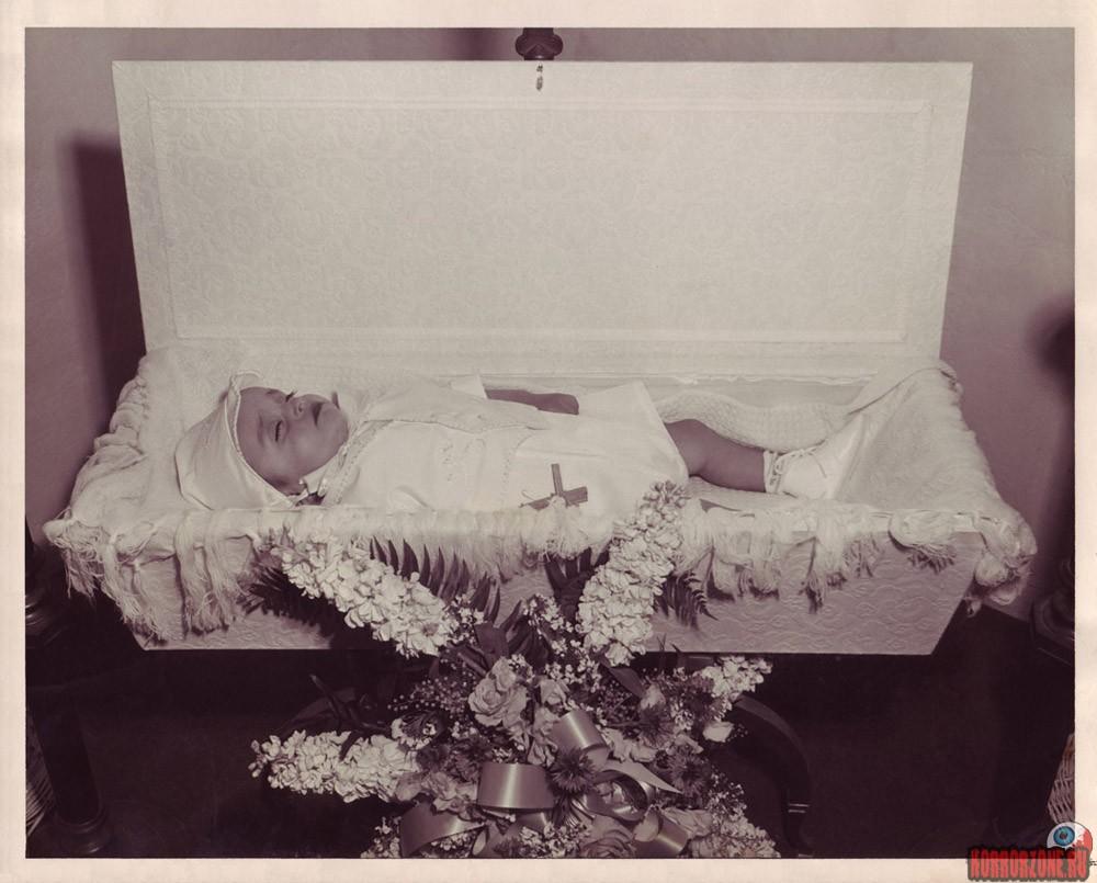 Видеть во сне старые фотографии владелец симпатичной