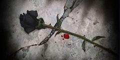 Happy Birthday Black Rose