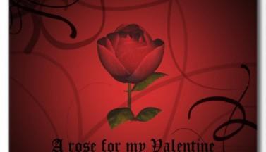 Happy Valentine's Day #6
