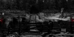 Дом с привидениями 2