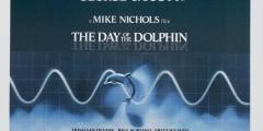 День дельфина. Постеры