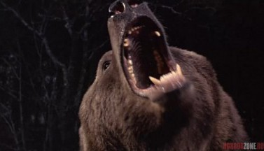 15 всеми забытых фильмов ужасов про животных-убийц