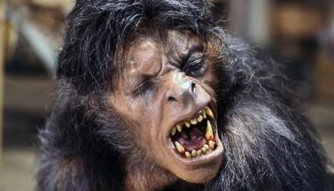 Американский оборотень в Лондоне (American Werewolf in London) (1981) - РЕЦЕНЗИЯ