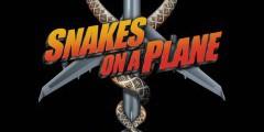 Змеиный полет. Саундтрек