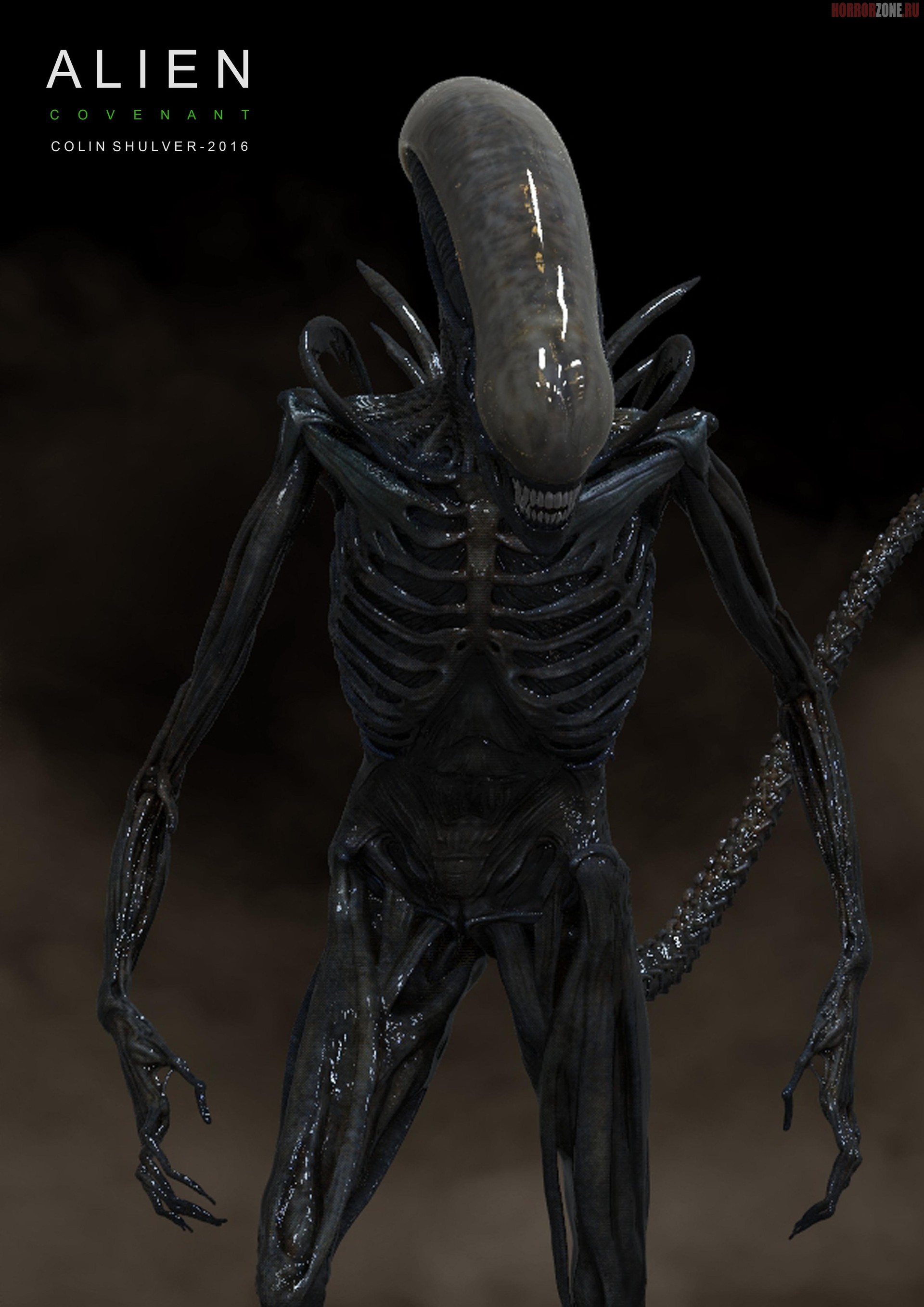 anchorpoint essays on xenomorph biology Edu thesis & essay: canadian history essay rubric it is the good news is that narrative essays are available anchorpoint essays on xenomorph biology.
