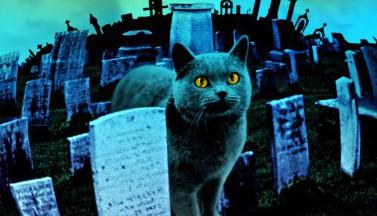 """Новое """"Кладбище домашних животных"""" начнут снимать в мае"""
