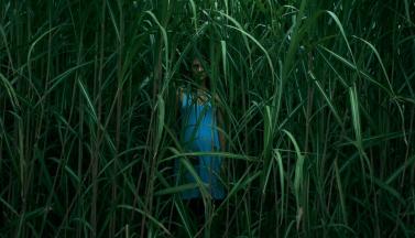 """Кто-то стоит """"В высокой траве"""": первый кадр новой экранизации Стивена Кинга"""