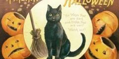 Хэллоуин, кот и тыква