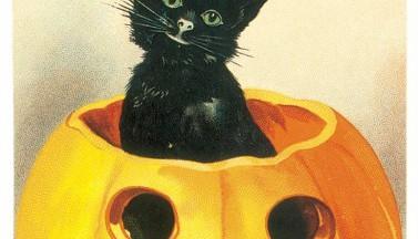 Веселого Хэллоуина :)