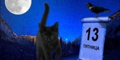 Котенок в Пятницу, 13-е