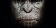 Планета обезьян: Революция. Саундтрек