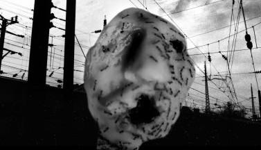 Муравьиная голова. Короткометражный фильм полностью
