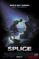 splice03.jpg