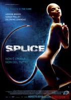 splice06.jpg
