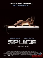 splice07.jpg