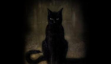 Черная фигура...Воображение или мистика?